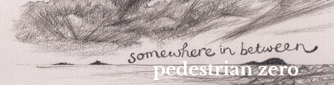 Pedestrian zero, Somewhere in between - promo image